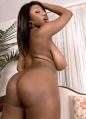 Big Black Ass and Tits Porn Pictures
